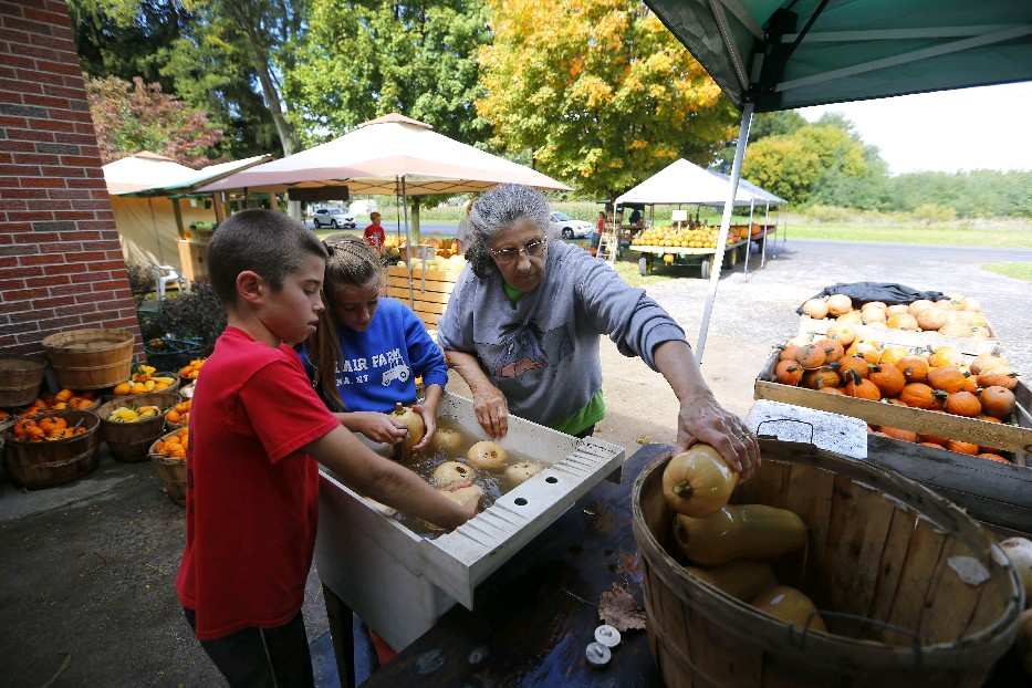 It could be a nice fall week to shop for pumpkins and squash. Daylight is getting shorter, but there will be four straight sunny days in Buffalo. The sun will set shortly before 7 p.m. on each of them. (Mark Mulville/Buffalo News)