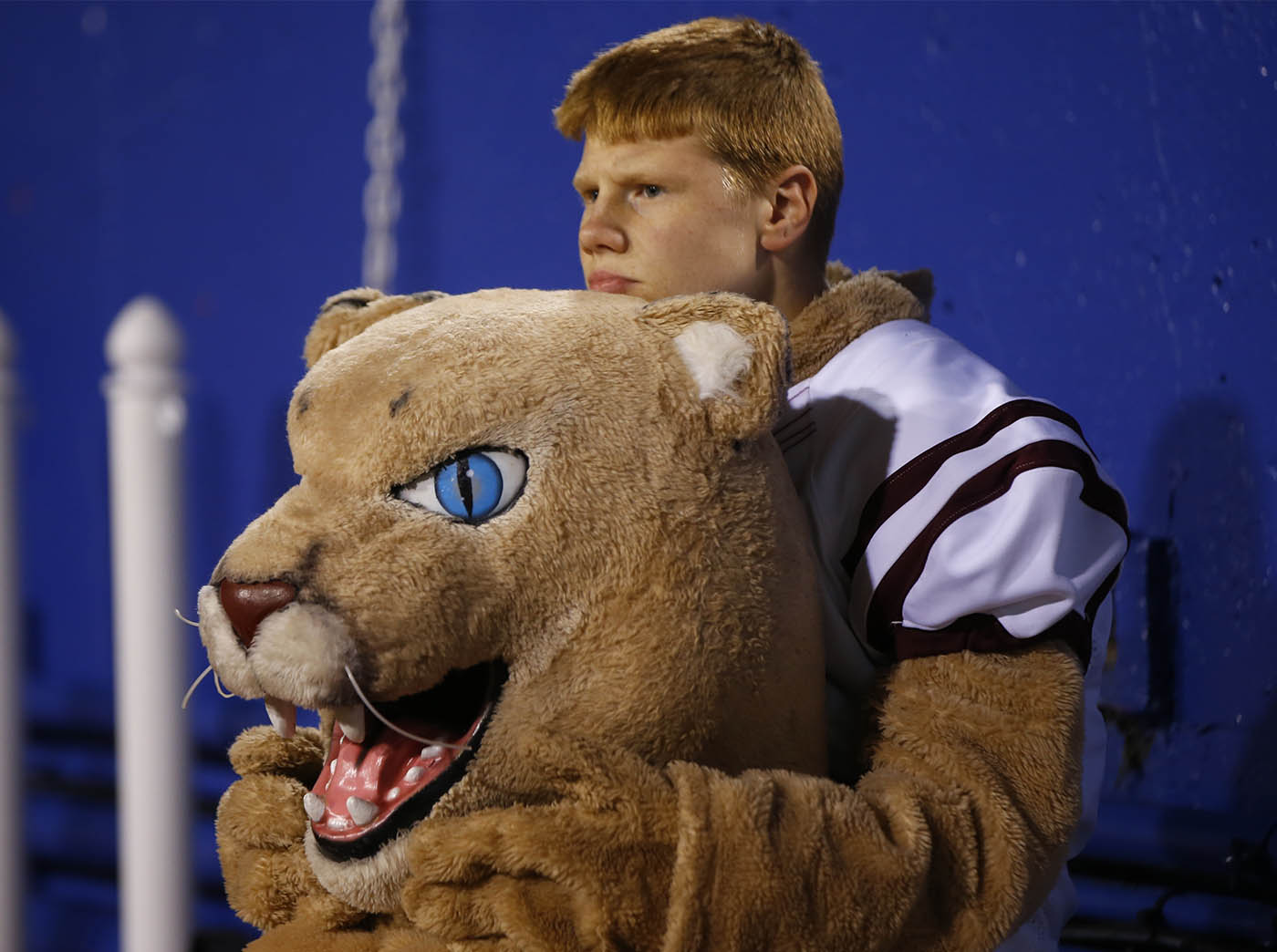 Dunkirk mascot Troy Cooper waits for the start against Batavia for the Class B Far West Regional at New Era Field on Saturday, Nov. 12, 2016.(Harry Scull Jr./Buffalo News)