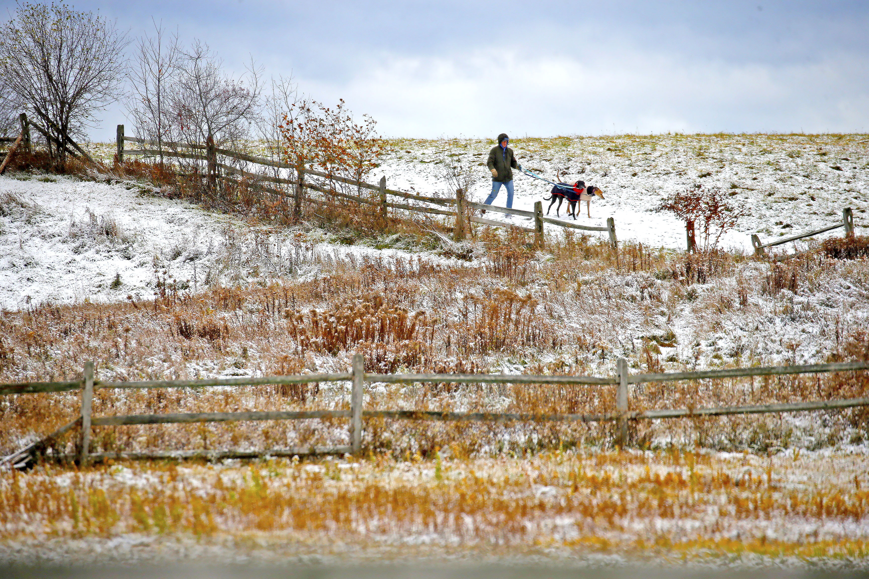 Kevin Neff of East Aurora walks his greyhounds around Knox Farm State Park in East Aurora Sunday.(Robert Kirkham/Buffalo News)