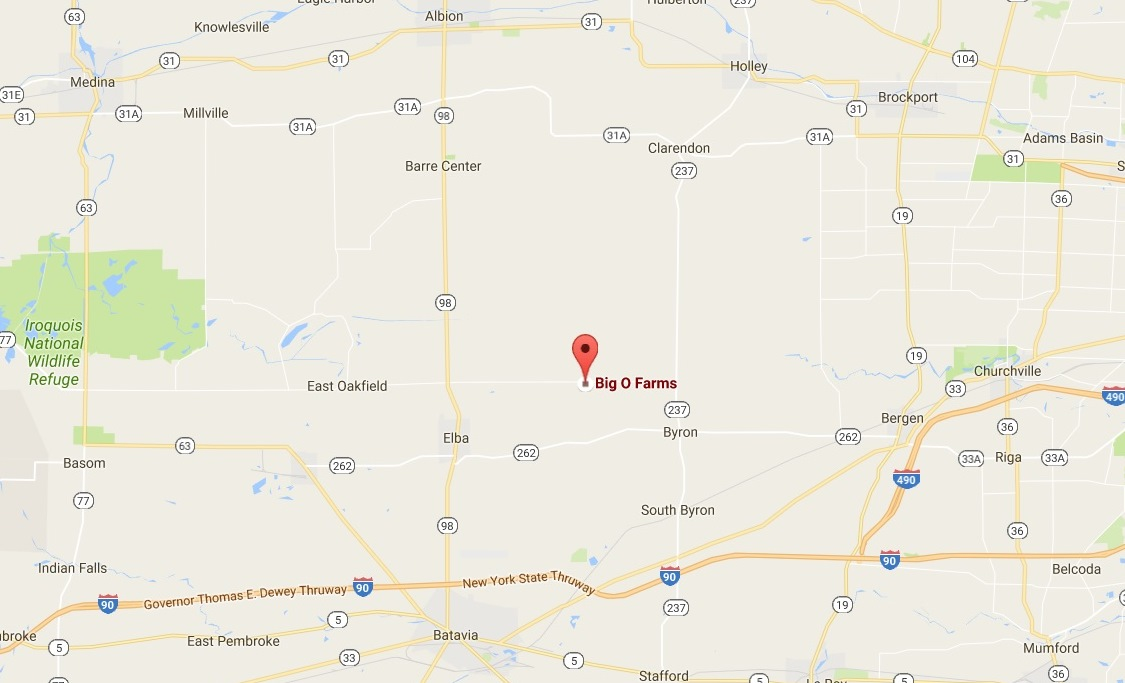 Google map shows location of Big O Farms in Elba.