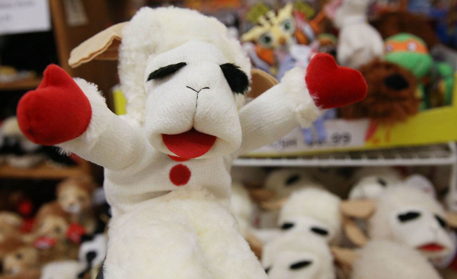 You never know what you'll find inside Vidler's. Lamb Chop puppets, for instance. (Sharon Cantillon/Buffalo News)