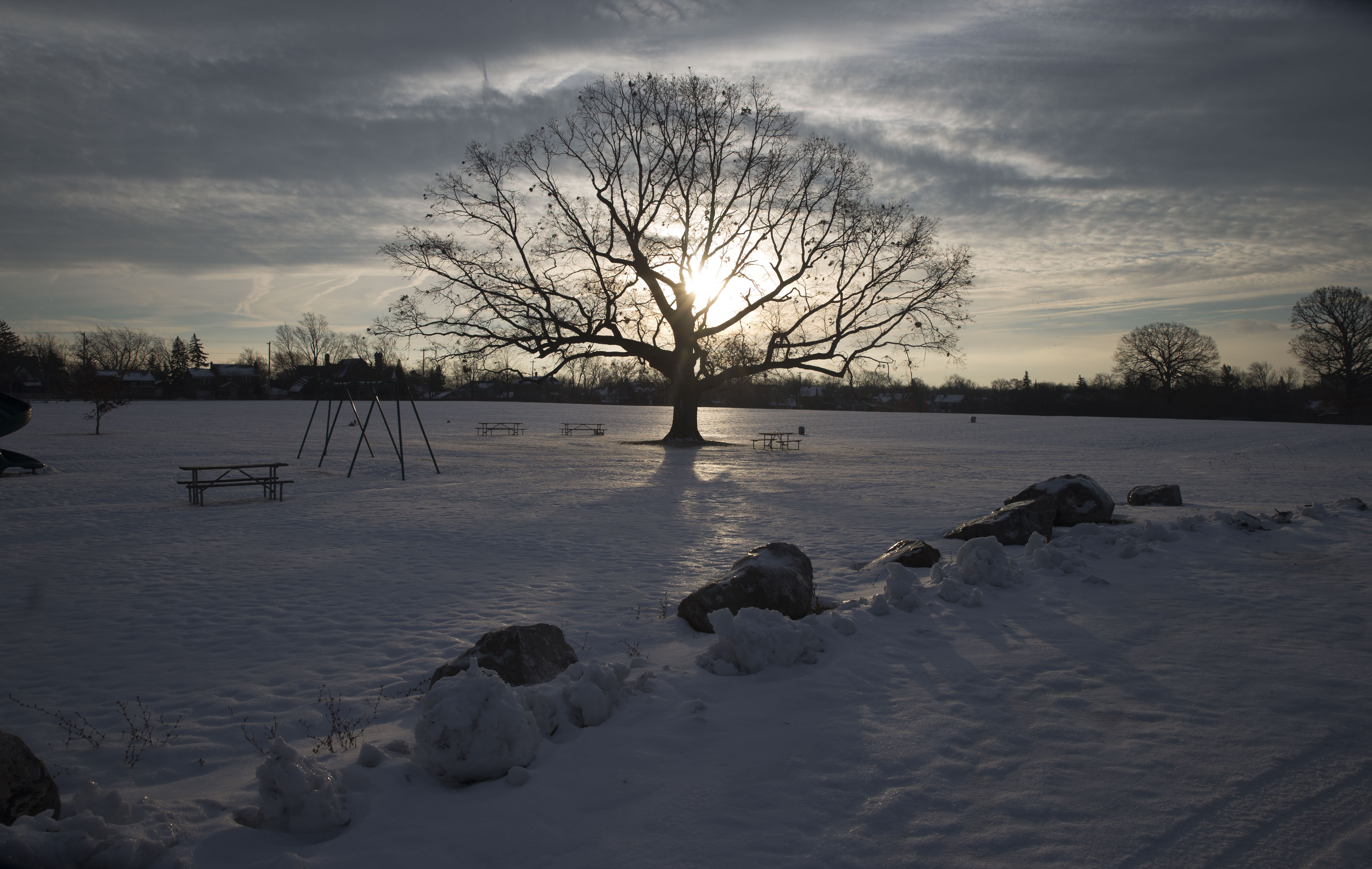 The sun struggles to peek through some clouds behind a solitary tree at DeVeaux Woods State Park in Niagara Falls, N.Y., on  Tuesday,  Dec. 20, 2016. (John Hickey/Buffalo News)