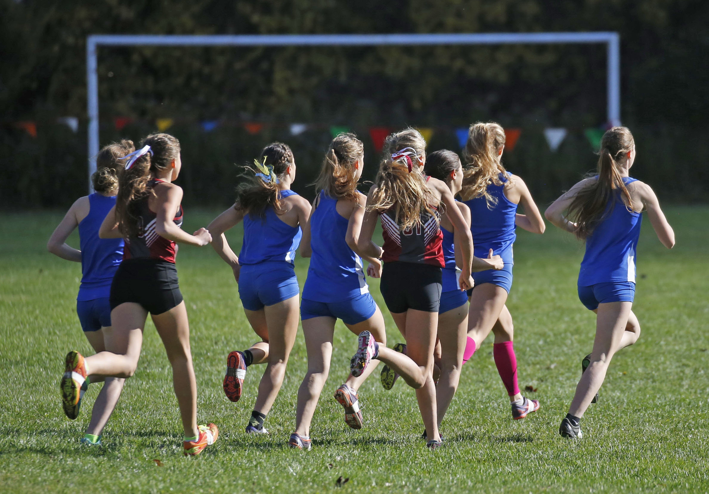 The start of the Class C race at the Section VI Cross Country cross country meet at Beaver Island State Park in Grand Island on Nov. 4, 2016.  (Robert Kirkham/Buffalo News)