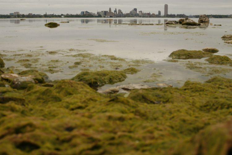 Legislator Patrick Burke said de-funding Great Lakes programs will thwart efforts to clean up the Great Lakes. (Buffalo News file photo)
