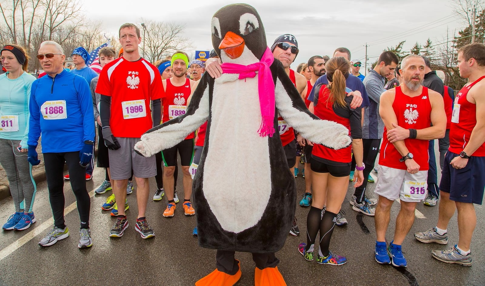 The penguin mascot for the Penguin Run poses by the starting line for the 2016 Penguin Run. (Don Nieman/Special to The News)