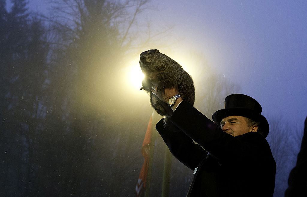 Punxsutawney Phil, shown here on Groundhog Day 2014, predicted Thursday that winter is going to stick around six more weeks.  (Photo by Jeff Swensen/Getty Images)