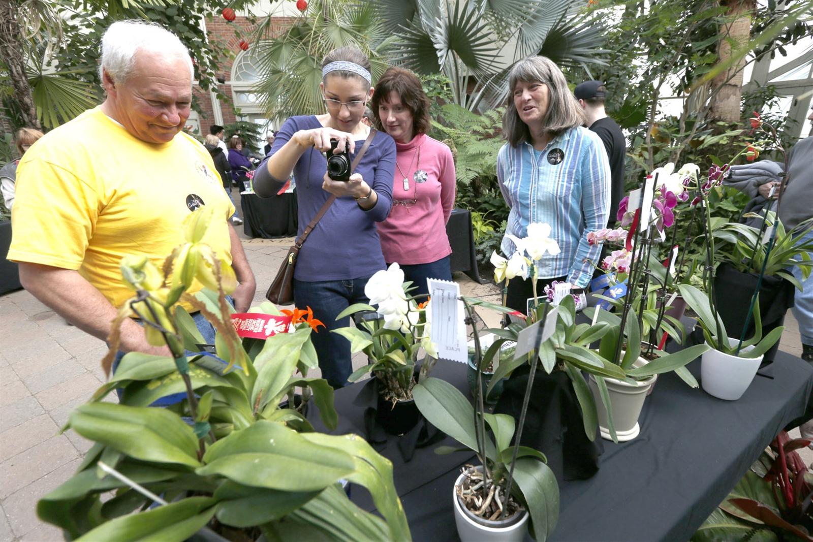 From left, Ray Wiser, of South Wales, Laurel Hendershott of Warsaw, Kathy Hendershott and Carrie Wiser stop to admire the orchids. (Robert Kirkham/Buffalo News)