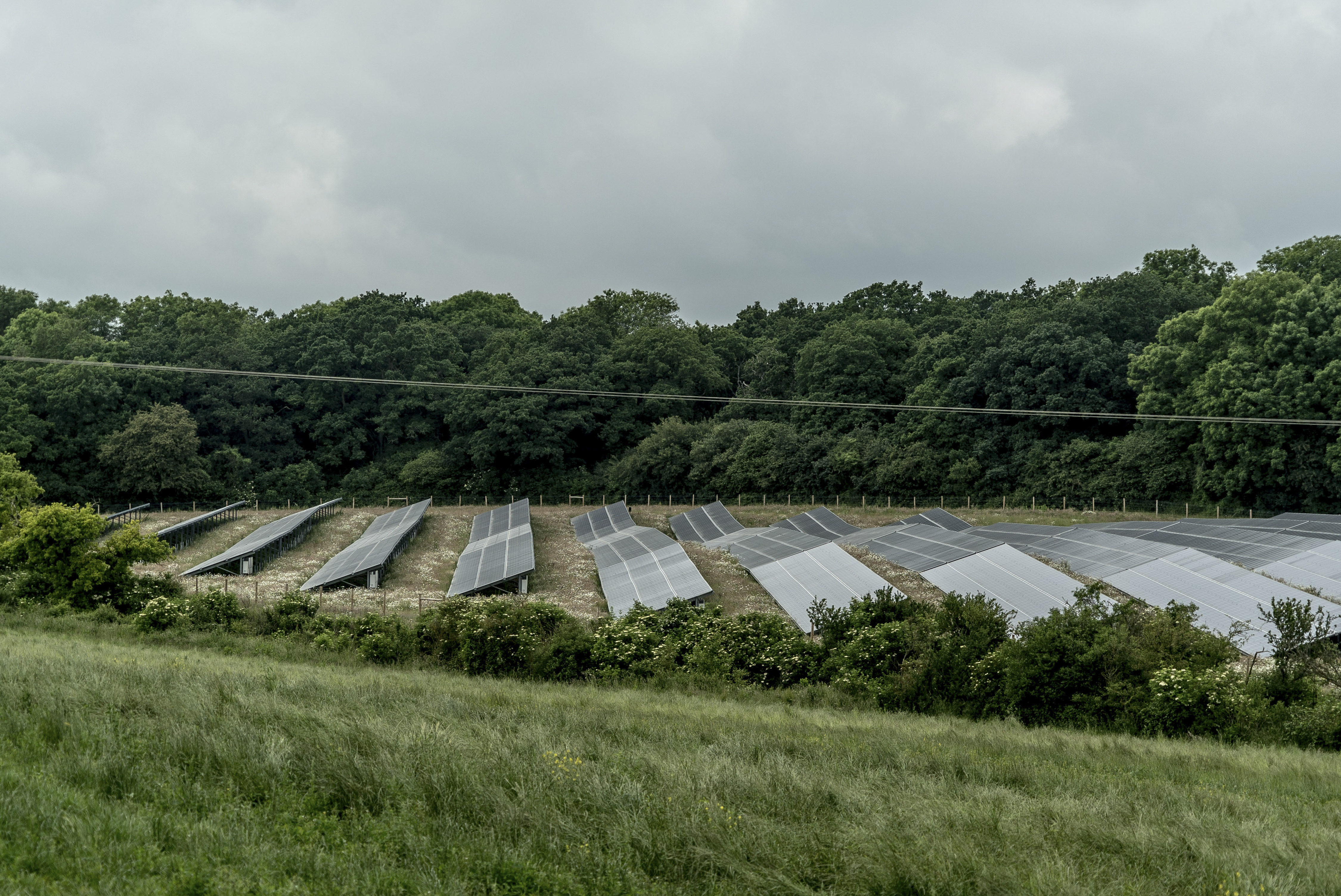 'We're not saying that no solar can be done,' Council member Matthew J. Walter said. 'It's just about the farms.' (Andrew Testa/ New York Times file photo)