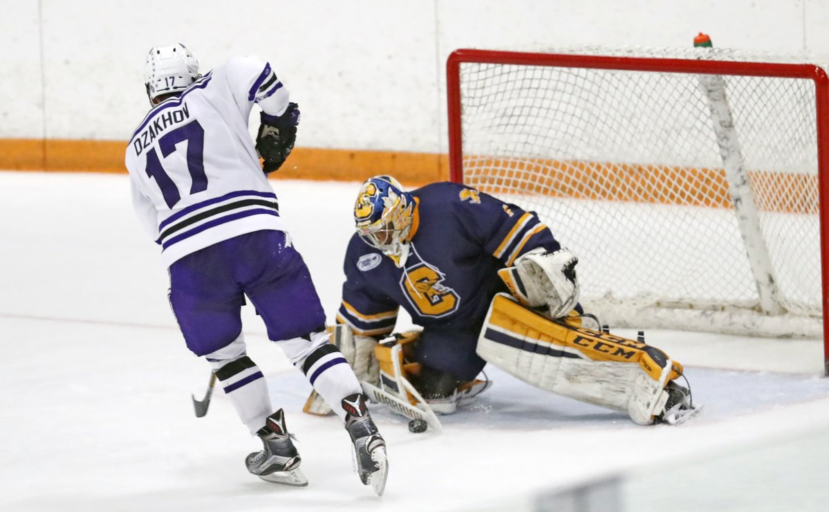 Canisius goaltender Charles Williams pitched another shutout on Friday night.  (Harry Scull Jr./Buffalo News)