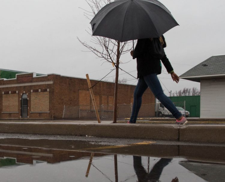 Umbrellas will be necessary today. It's expected to rain for most of the day, but it'll be warm — in the low 50s, forecasters said. (Derek Gee/News file photo)