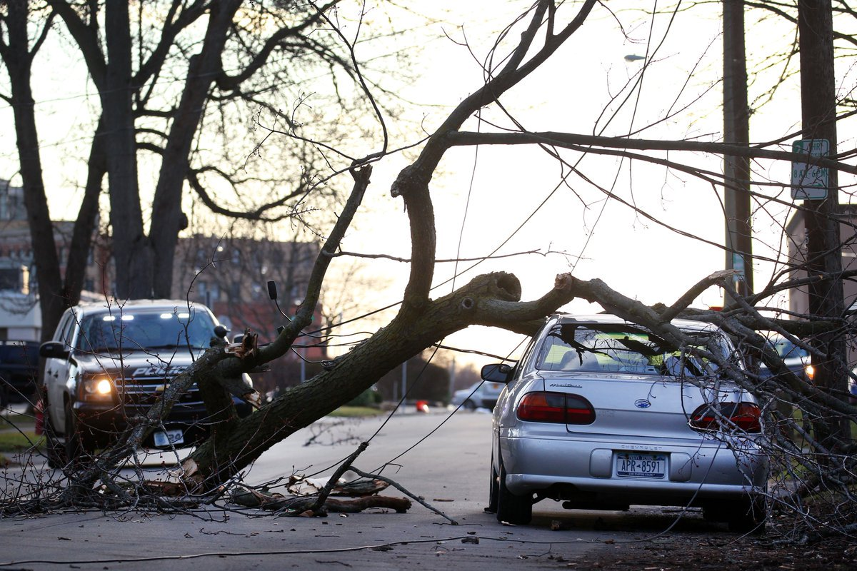 Crews work on wind damage from downed trees in Lockport. (Mark Mulville, staff photographer)