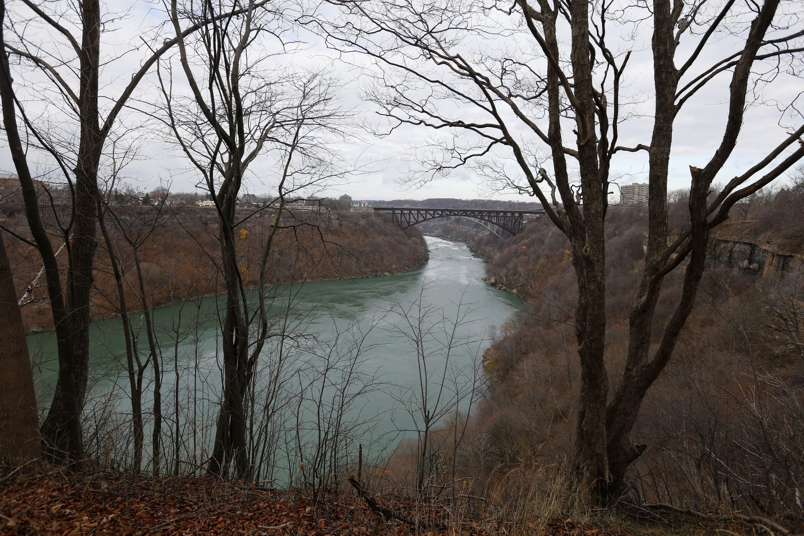 A view of the Niagara River from the Great Gorge Railway Trail. (Mark Mulville/News file photo)