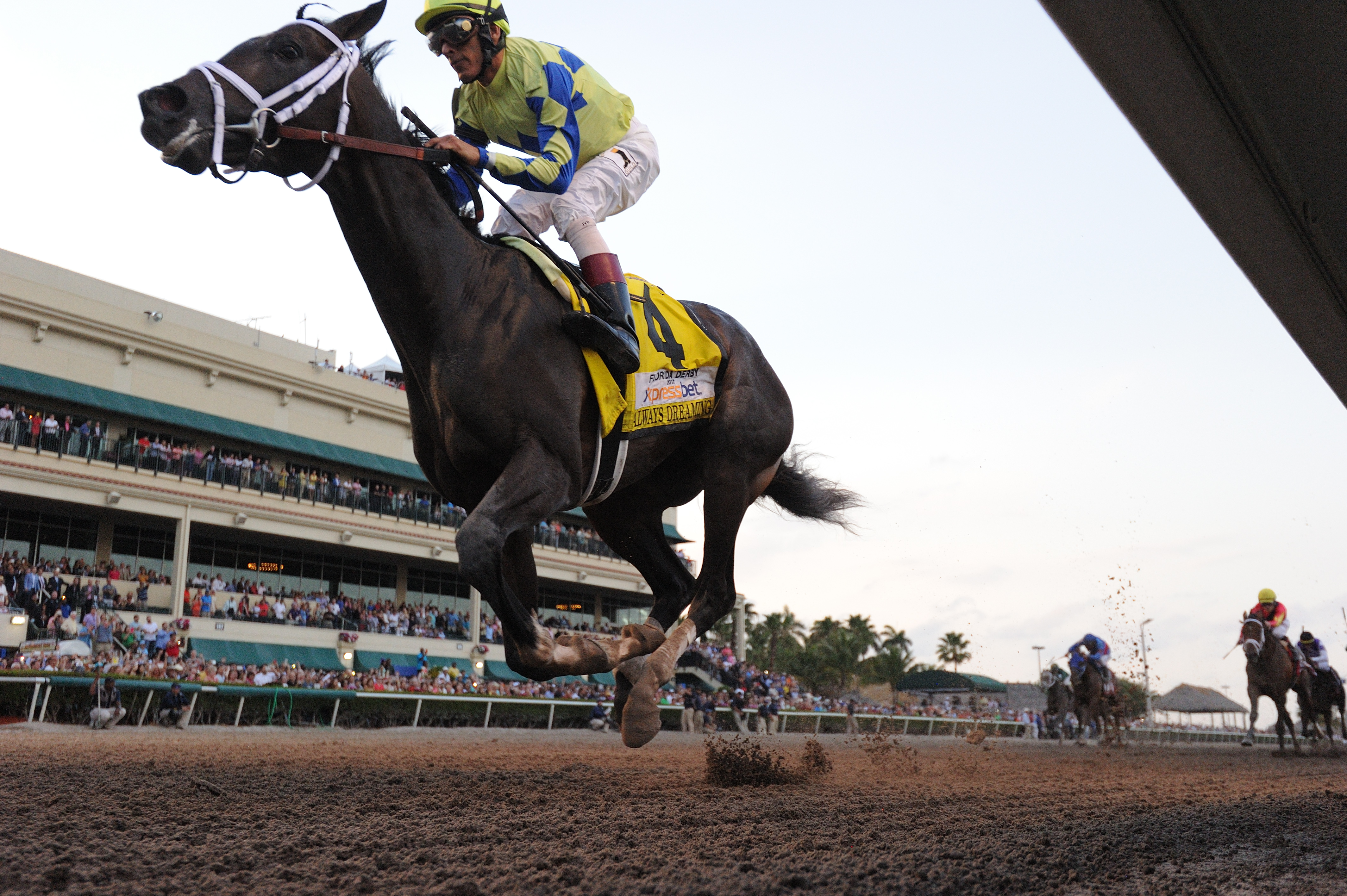 Always Dreaming heads to the Kentucky Derby off a big win in the Florida Derby. Credit: Coglianese Photos