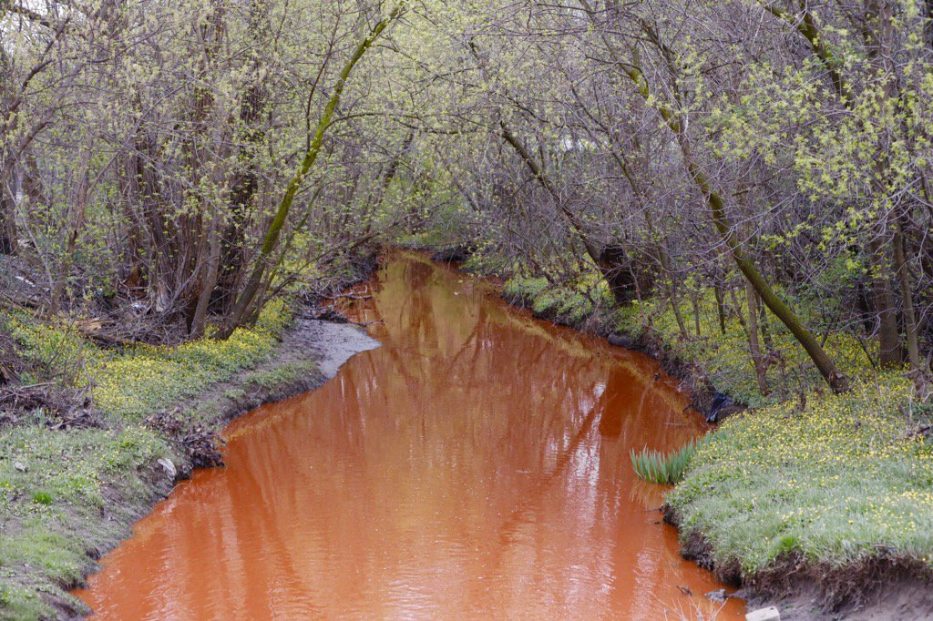 Scajaquada Creek in Lancaster is the color of ketchup after a red dye was found in the water. (Derek Gee/Buffalo News)