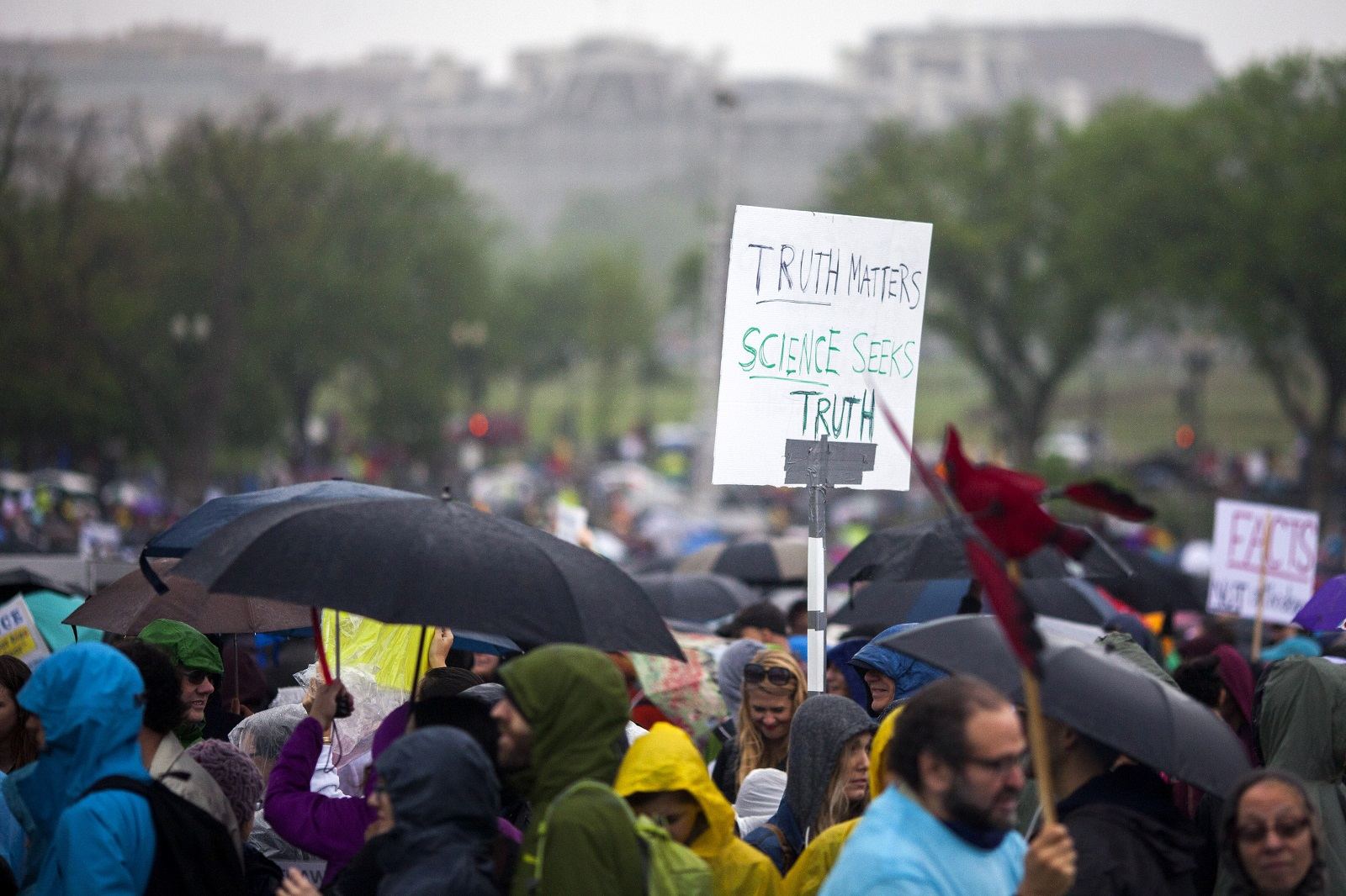 Scientists and supporters gather on the National Mall in Washington, D.C> for the rally before the March for Science last weekend. (Jessica Kourkounis/Getty Images)