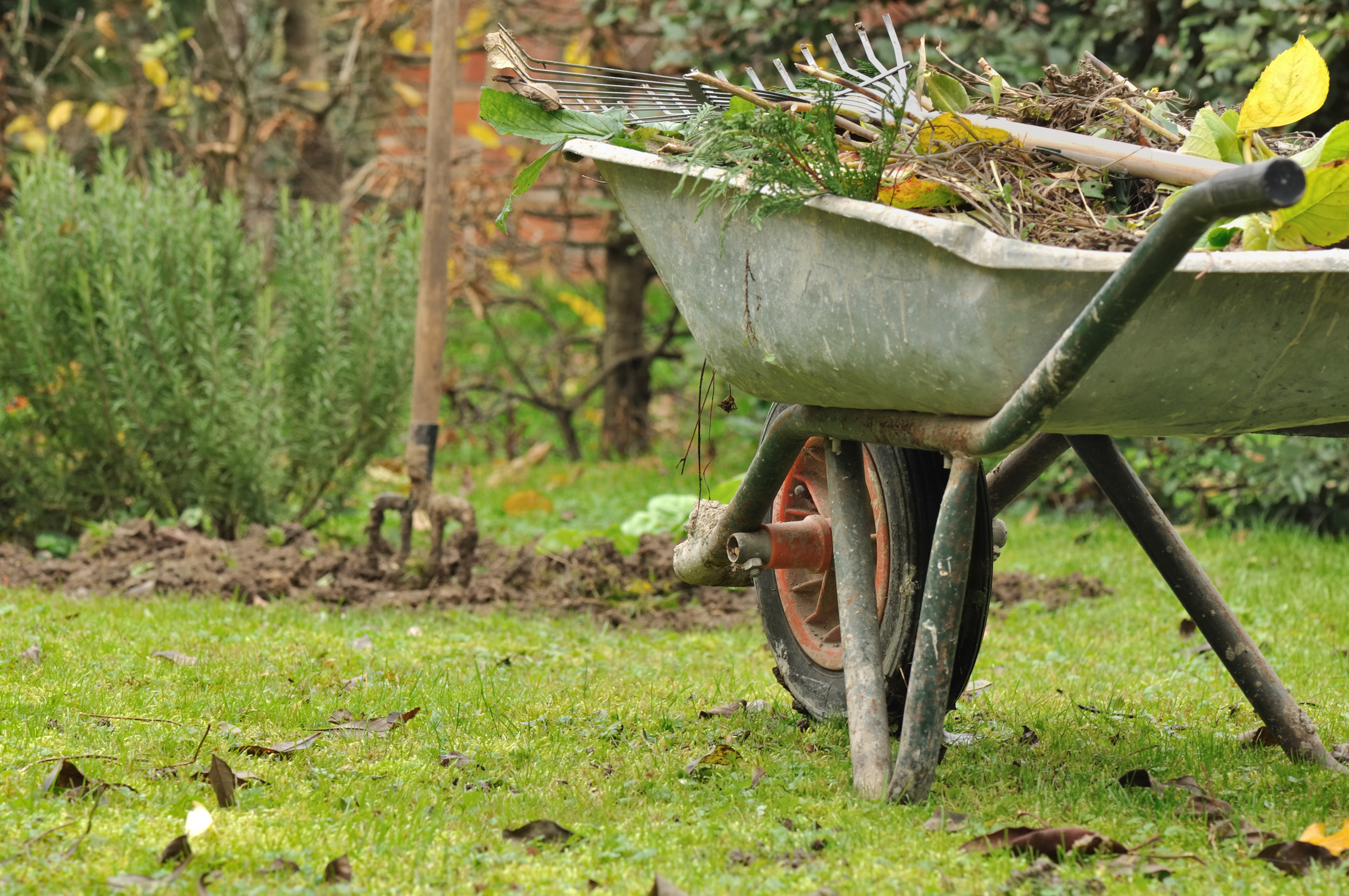 One small effort is keeping and reusing organic matter as close to home as possible rather than sending it to the curb.