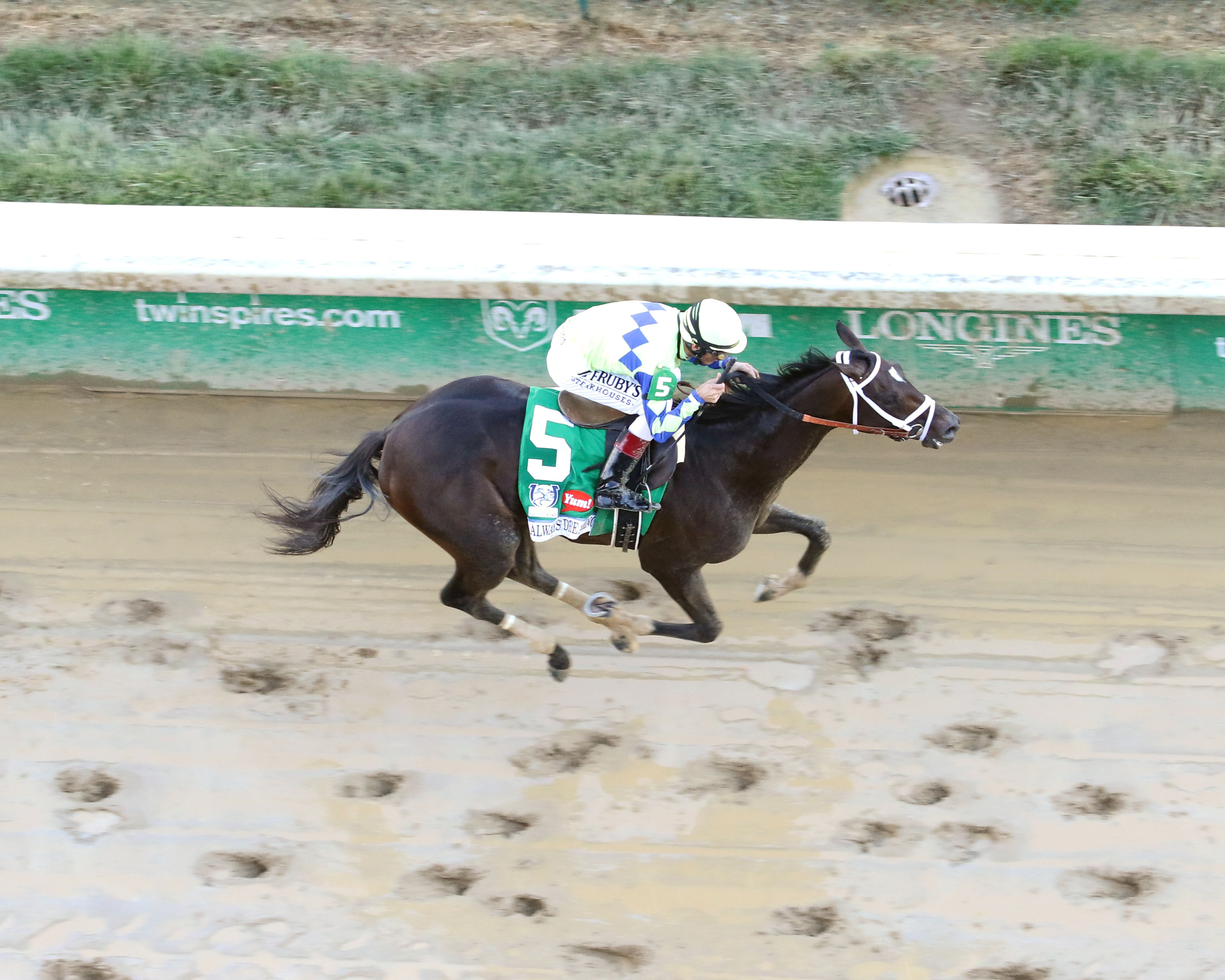 Always Dreaming will look to add the Preakness to his Derby win next Saturday Photo Credit: Coady Photography/Churchill Downs