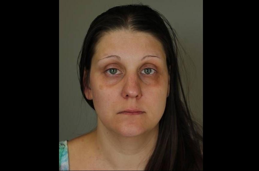 Heather R. Kelly, 38, of North Tonawanda, faces numerous charges. (City of Tonawanda Police)