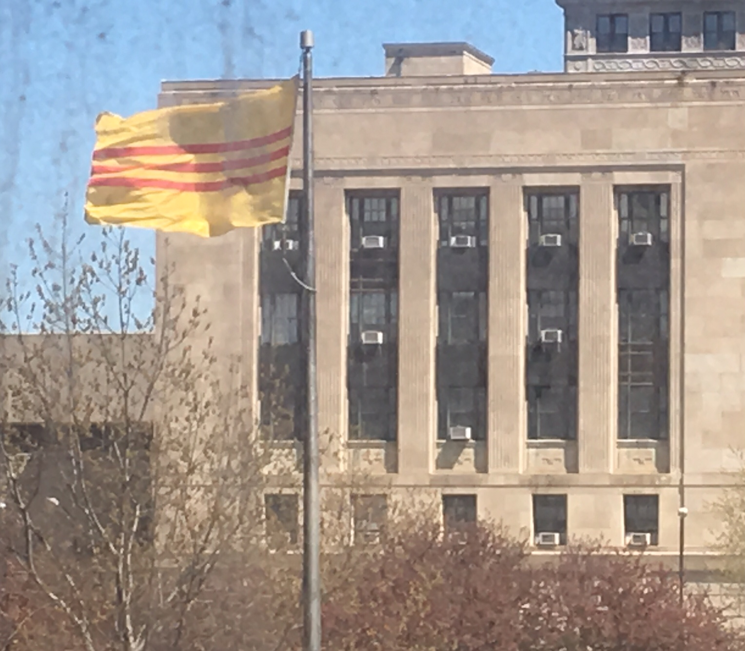 Flag in front of City Hall