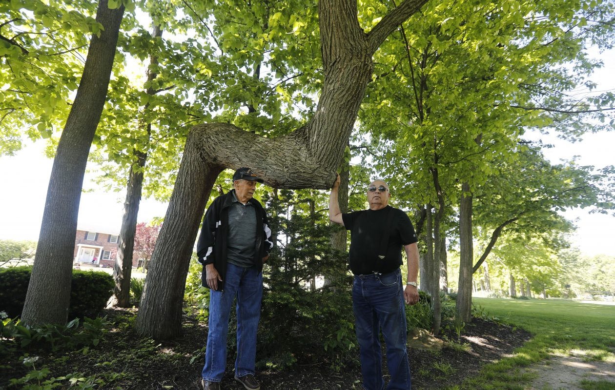 Chief Leo Henry, left, and Jim Bissell, right, stand with an ancient and significant trail tree  that was recently discovered in the yard of a residence in Sanborn. (Mark Mulville/Buffalo News)