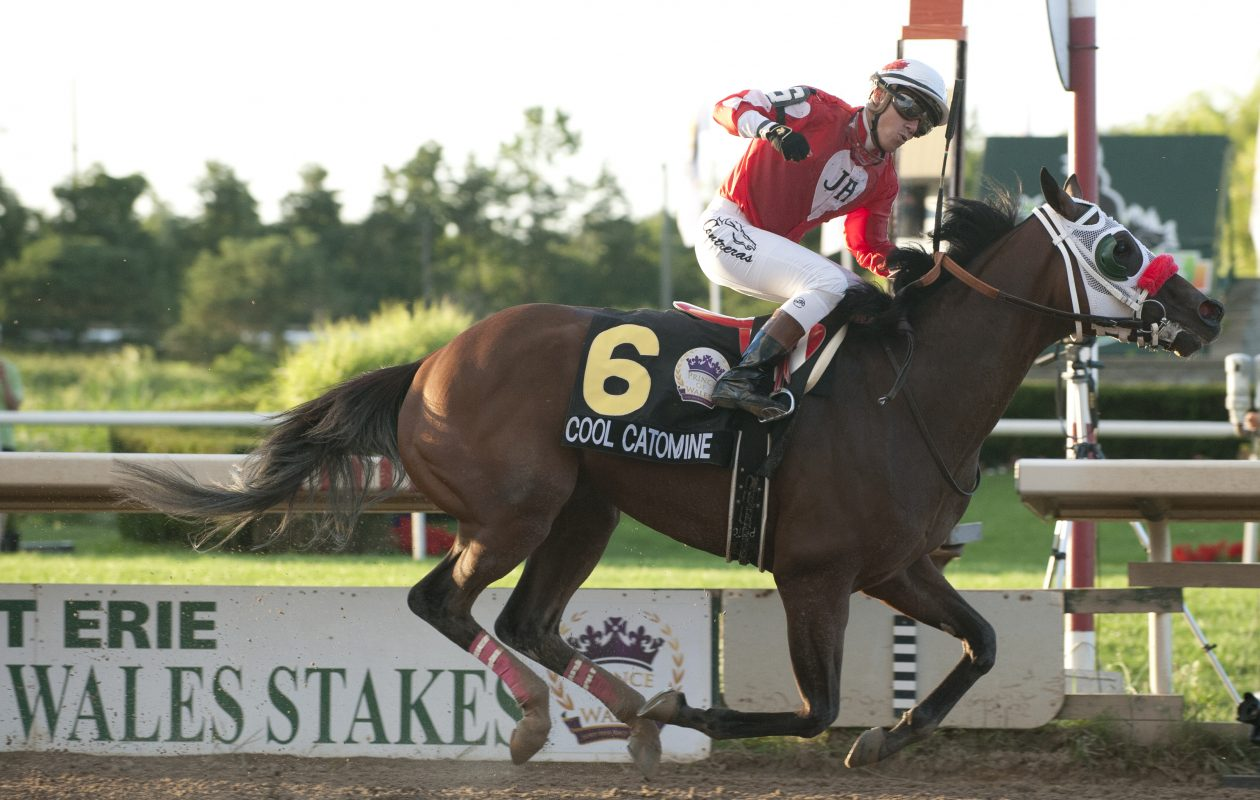 Jockey Luis Contreras guides Cool Catomine to victory in the $500,000 dollar Prince of Wales Stakes at Fort Erie Racetrack.  Photo Credit: michael burns photo