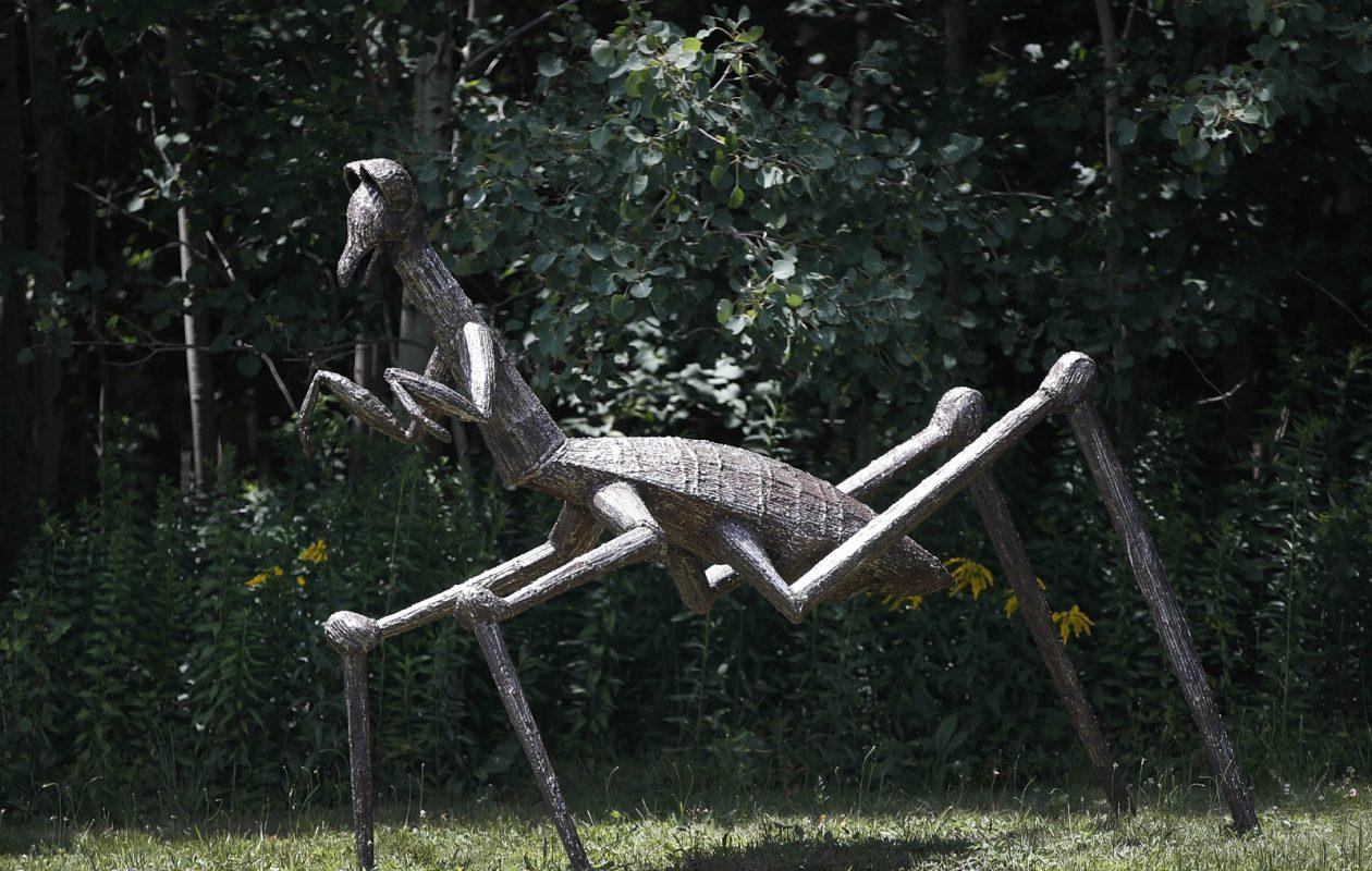 Creatures are everywhere at Griffis Sculpture Park. (Sharon Cantillon/Buffalo News)