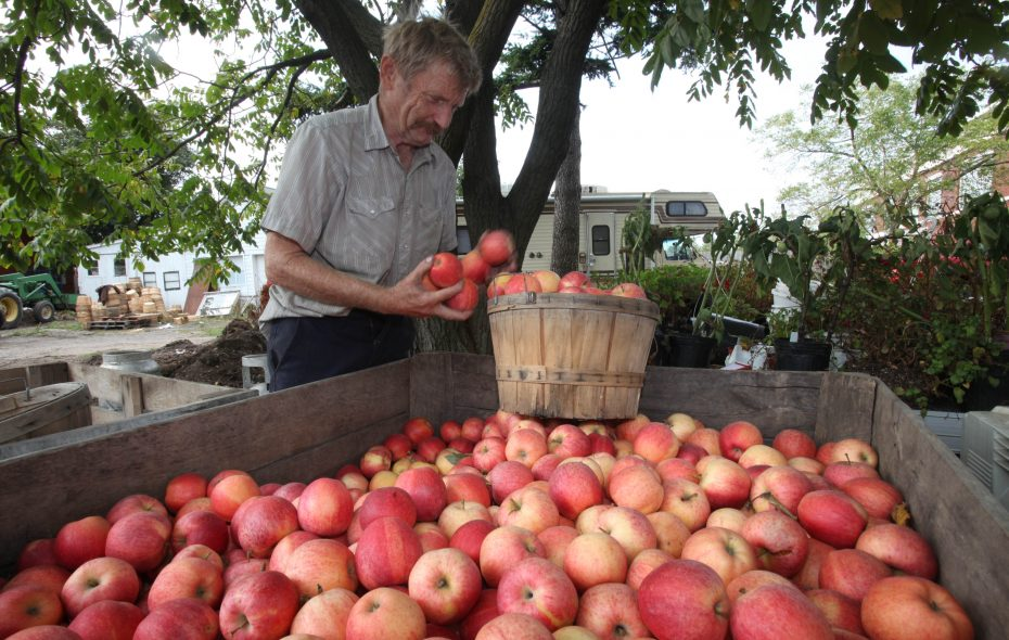 George's Produce Market to move as family sells Amherst land