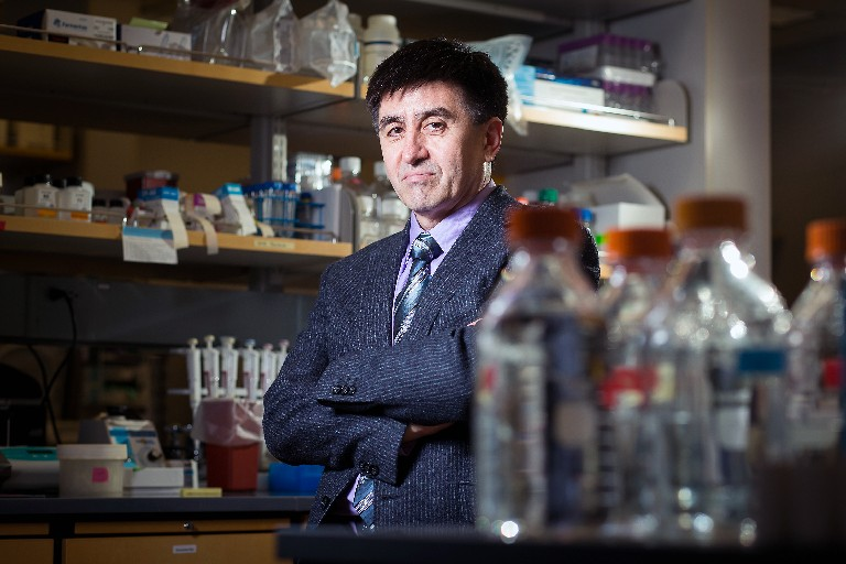Shoukhrat Mitalipov, director of the Center for Embryonic Cell and Gene Therapy at Oregon Health and Science University, is a senior author of a study detailing how scientists have for the first time successfully edited genes in human embryos to repair a serious disease-causing mutation. (New York Times file photo)
