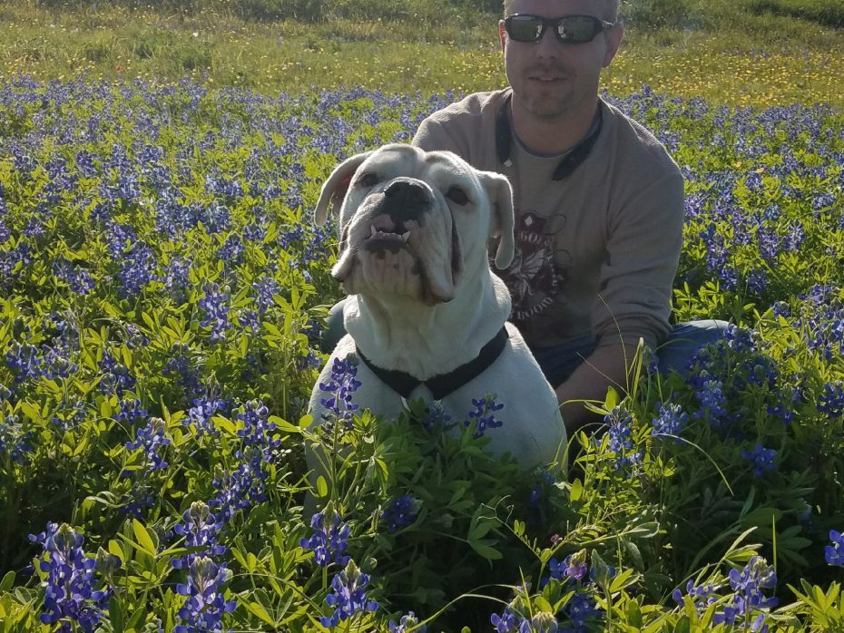 Frank: The English bulldog of Starpoint graduate David Scherff fell in the water and has not been found amid Sunday's rescue efforts. (David Scherff image)