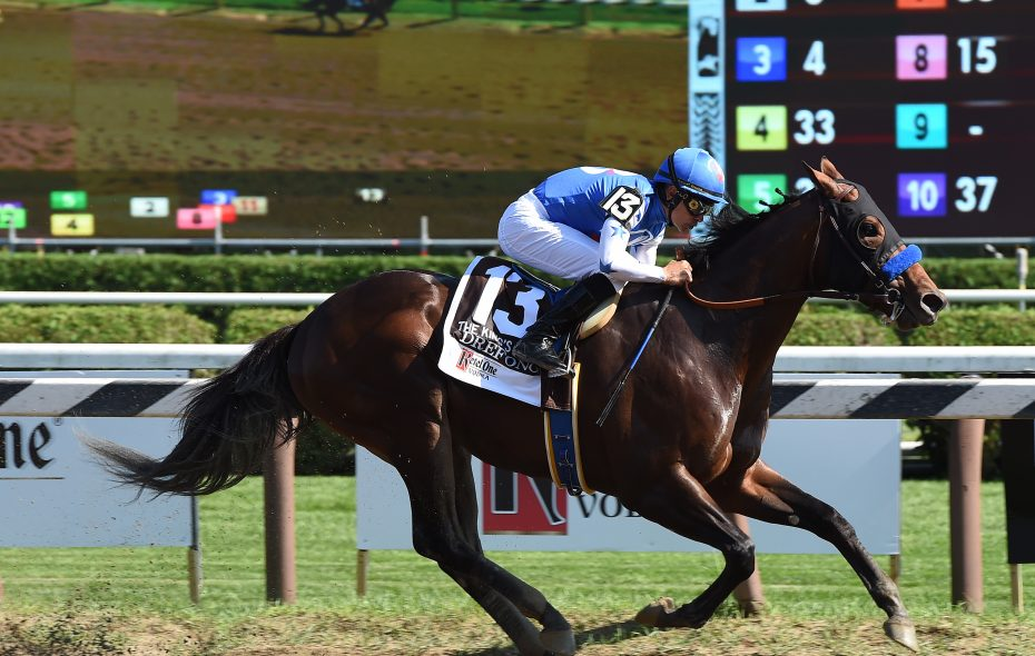 Drefong won on last year's Travers undercard and looks to win the G1 Forego Photo Credit: Susie Raisher/NYRA