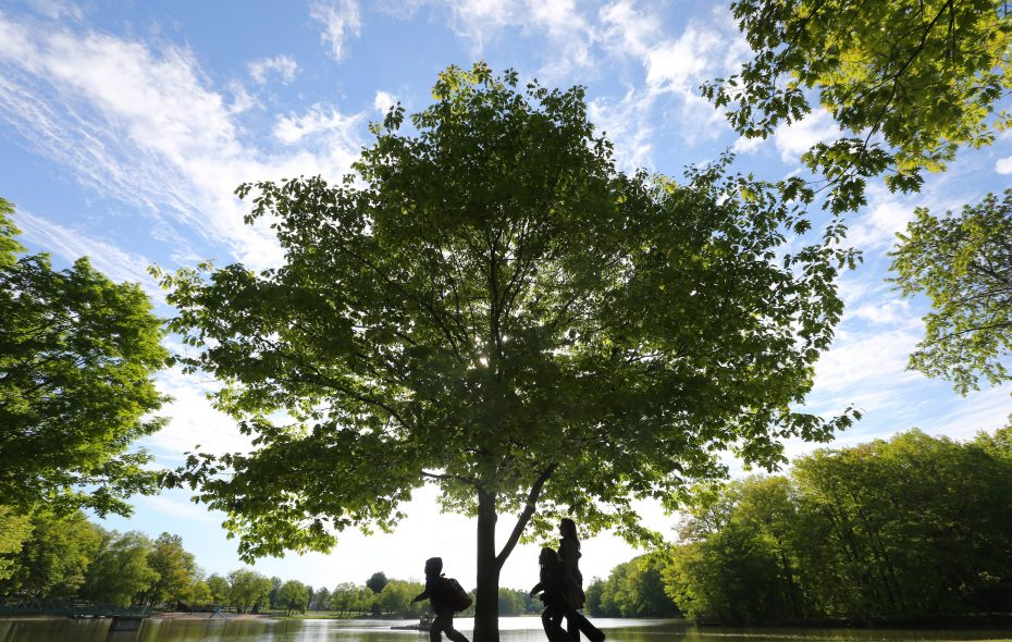 Maintenance at Green Lake and six other parks in Orchard Park would be under a new Parks and Recreation Department under a proposal to the Town Board. (File photo by Mark Mulville/Buffalo News)