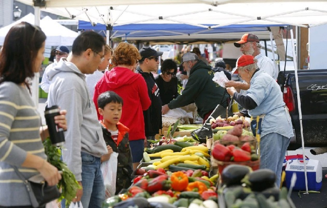 The Williamsville Farmers Market runs from 8 a.m. to 1 p.m. Saturday in the lot outside Amherst Town Hall on Main Street in Williamsville. (Mark Mulville/Buffalo News)