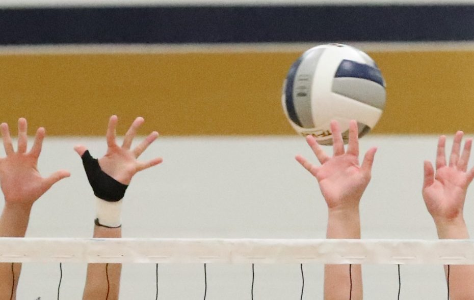 Volleyball seasons have been canceled at both schools.