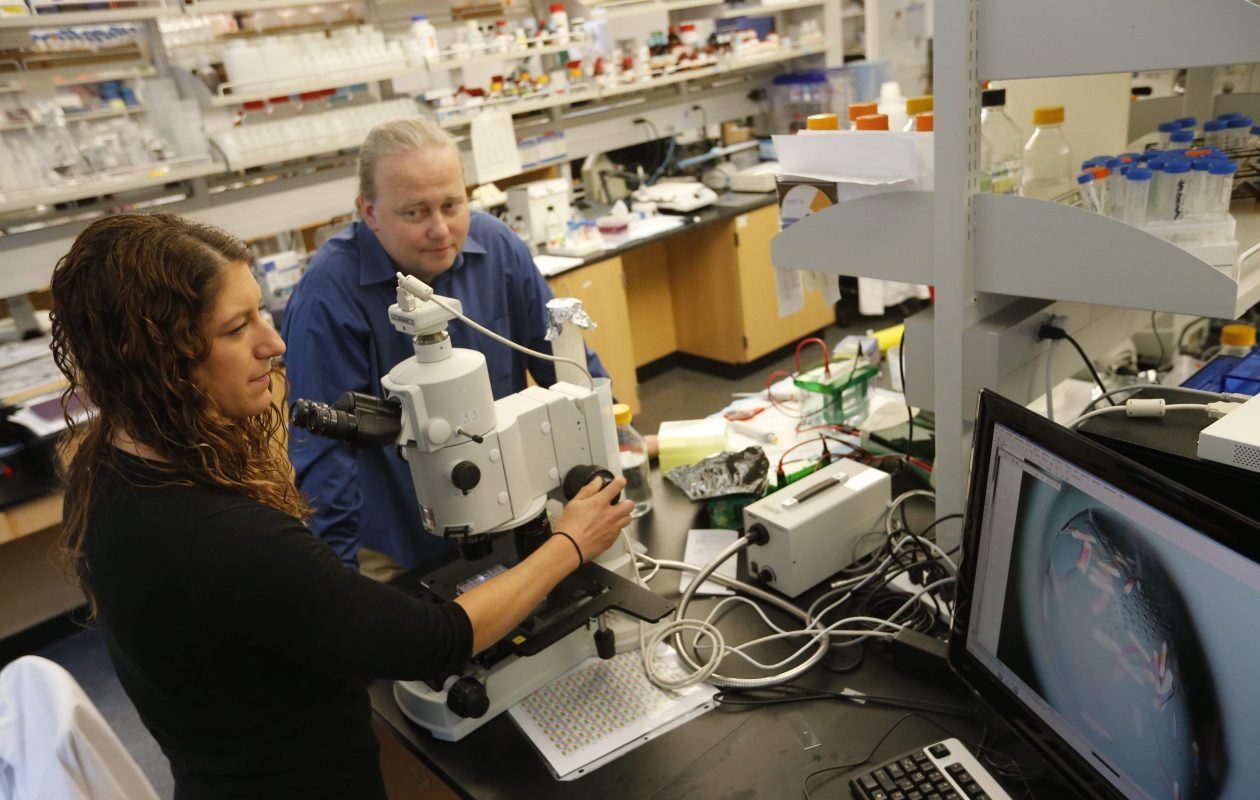 Artel Evdokimov, CEO and CSO of HarkerBIO , and Kristin Sutton, senior project manager, work in the company's lab in the Hauptman-Woodward Medical Research Institute.  (Derek Gee/Buffalo News file photo)
