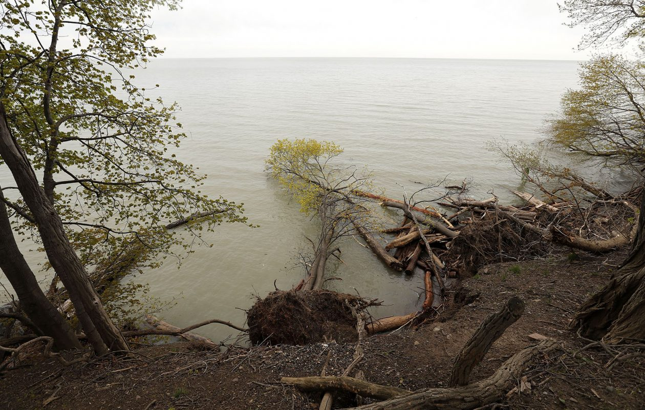 Water erosion took down trees on the banks of Old Fort Niagara in Youngstown on May 4, 2017. (Mark Mulville/News file photo)