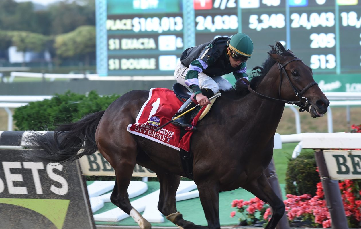 Diversify, the Jockey Club Gold Cup winner, is the morning line favorite in the Clark Handicap. Photo Credit: NYRA