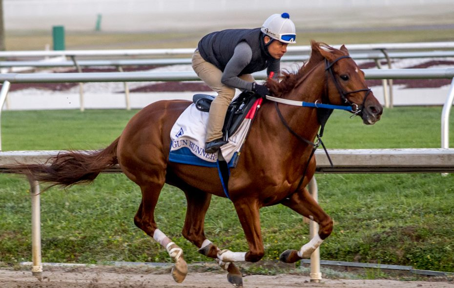 Gun Runner should claim 2017 Horse of the Year honors.  Photo Credit: Lou Hodges