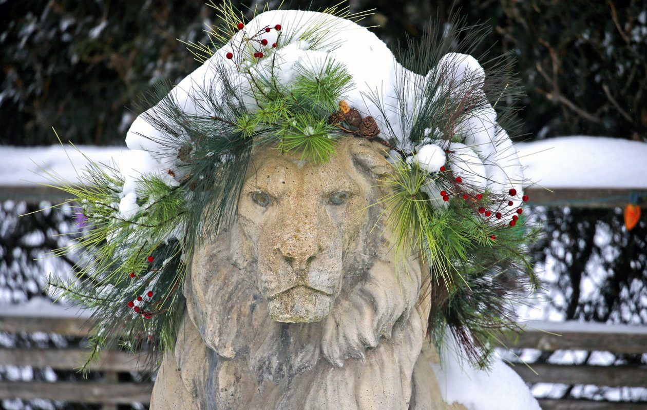 March came in like a lion. Odds are it'll go out like one, too, forecasts show. (Robert Kirkham/Buffalo News)