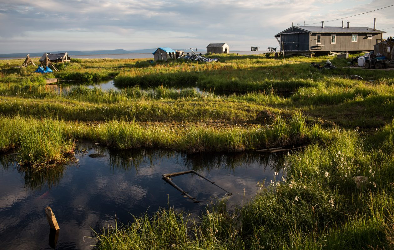 Rising seas and warming temperatures are forcing Alaskan coastal communities to move inland, and some wonder if long-frozen pathogens in such environments will thaw and pose a hazard to humans and animals. (Getty Images)