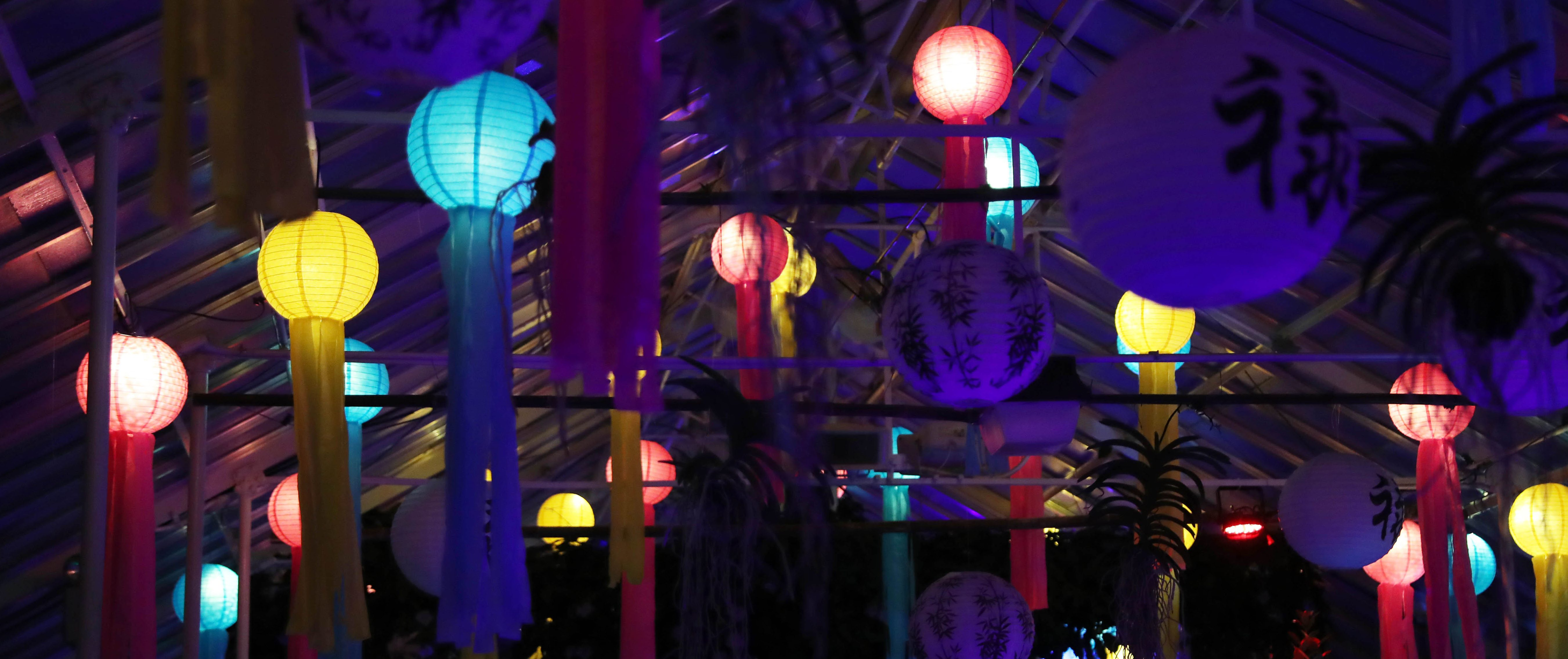 Lumagination at the Botanical Gardens is just one way to enjoy Valentine's Day without being generic. (Sharon Cantillon/Buffalo News)