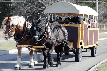 Winterfest at Chestnut Ridge Park