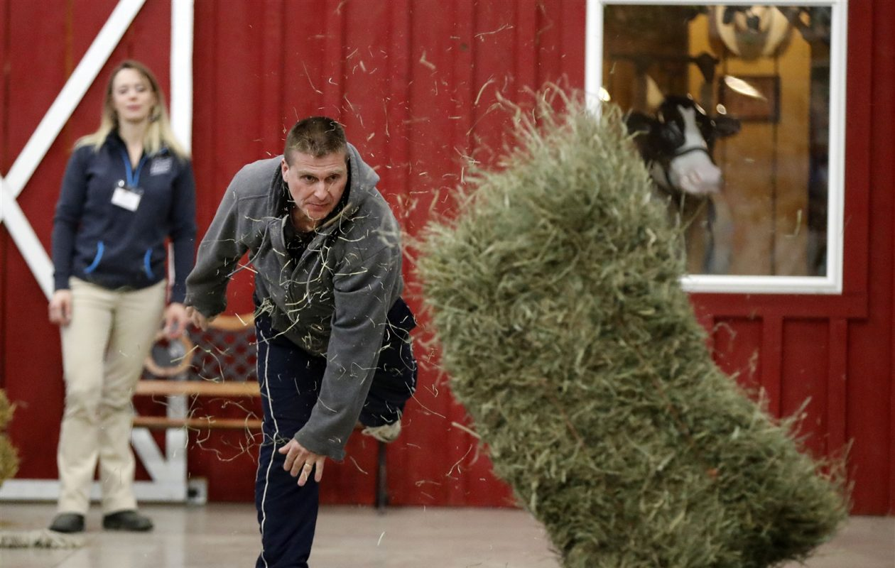 Greg Tara of Orchard Park competes in the farm show's hay bale throwing competition. (Mark Mulville/Buffalo News)
