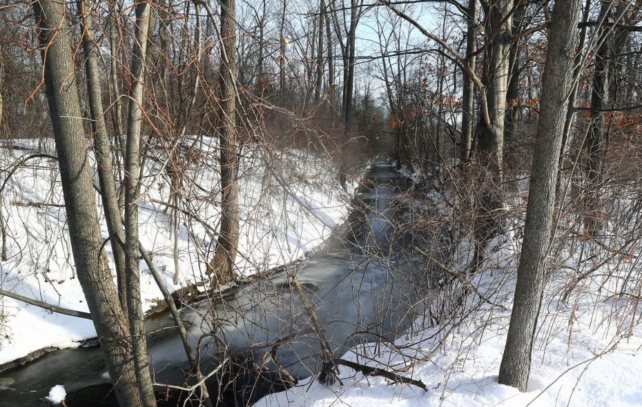 Officials hope the Town of Niagara-Buffalo Niagara Waterkeeper project becomes a catalyst for more – and larger – restoration efforts along Cayuga Creek. (John Hickey/Buffalo News)