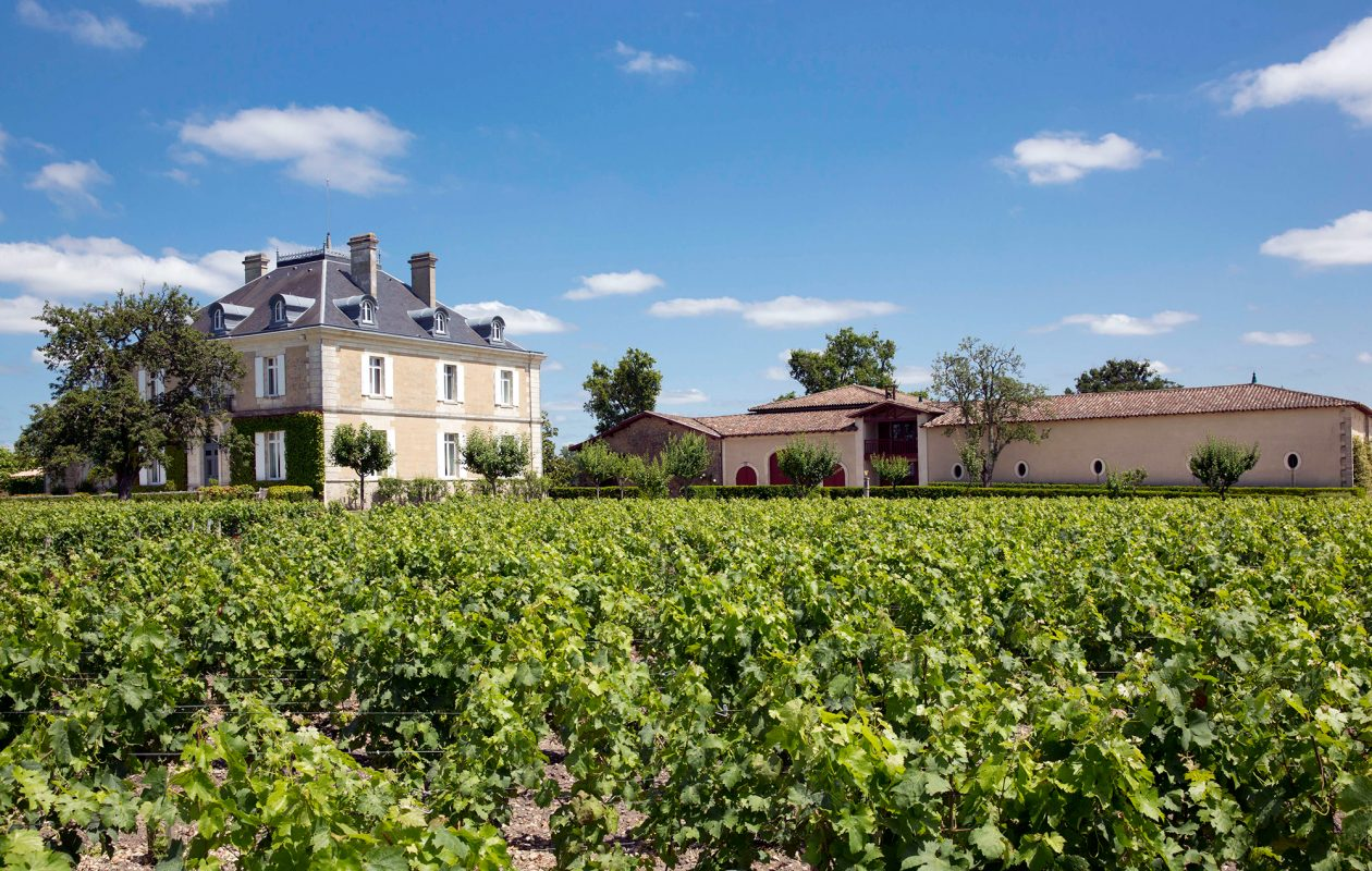 The late Bob Wilmers brought new life to Chateau Haut-Bailly, the Bordeaux vineyard he purchased in 1998.