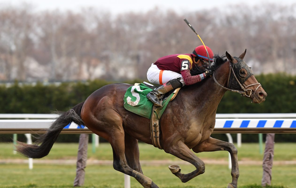 Catholic Boy winning the G2 Remsen at Aqueduct Racetrack in December. Photo Credit: Viola Jasko/NYRA