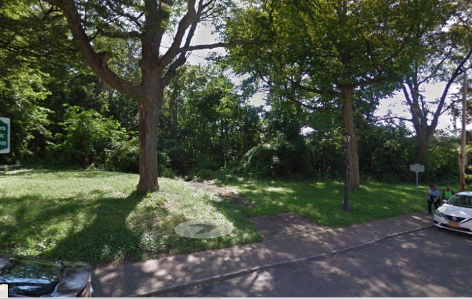 The wooded lot at 101 Buffalo Ave., Niagara Falls. (Google image)
