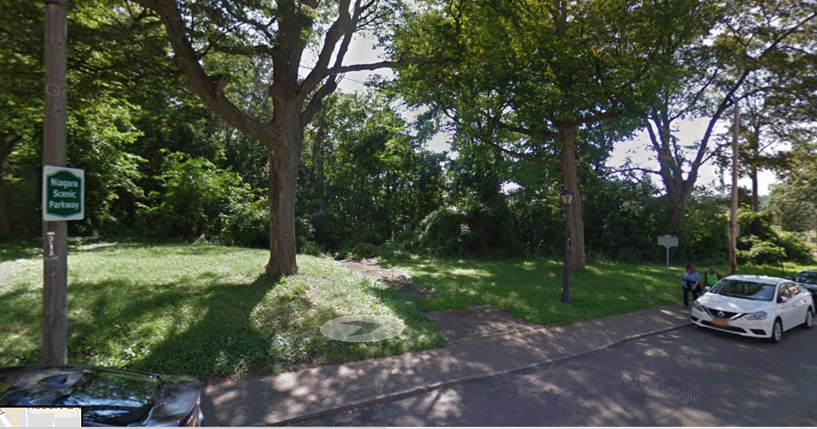 The wooded lot at 101 Buffalo Ave., Niagara Falls. (Google image)