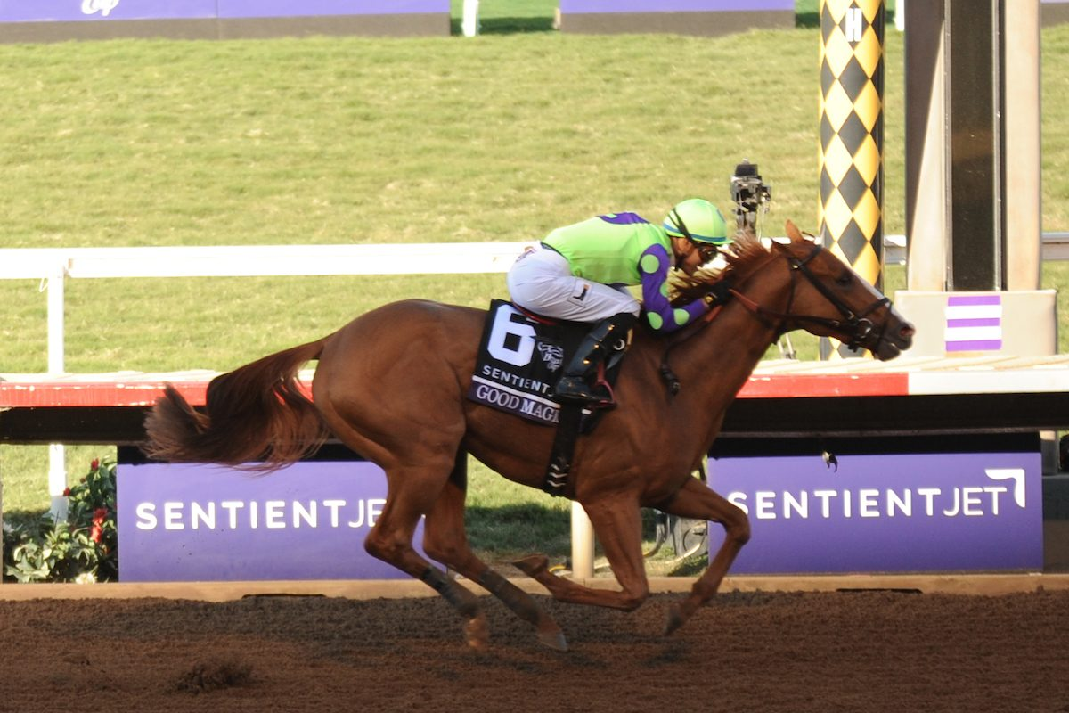 Good Magic, ridden by Jose Ortiz, wins the Breeders' Cup Juvenile  race on Day 2 of the 2017 Breeders' Cup World Championships at Del Mar Racing Club (Photo by Carson Denis/Eclipse Sportswire/Breeders Cup)