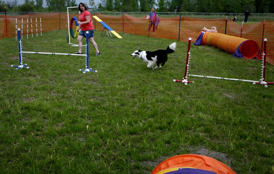 Maggie Ohol takes her dog, Junior, through the agility course on June 4, 2011, after the leash-cutting ceremony at the Paw Park on Smith Road in Amherst. A user has sued the town and the association that operates the park for an injury she suffered at the park. (Buffalo News file photo)