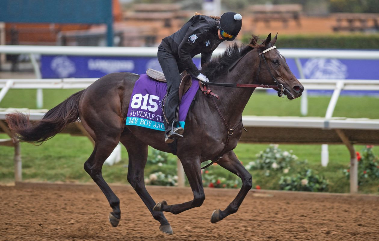My Boy Jack, trained by J. Keith Desormeaux, exercises in preparation for the Breeders' Cup Juvenile Turf at Del Mar last November (Photo by Scott Serio/Eclipse Sportswire/Breeders Cup)